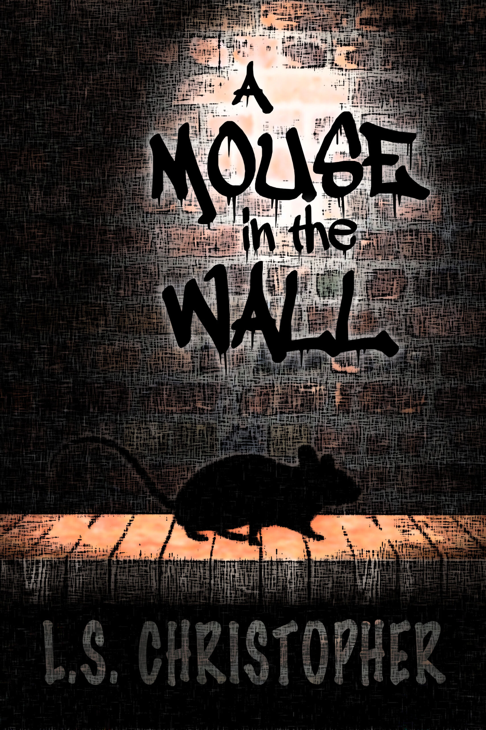 A Mouse in the Wall cover